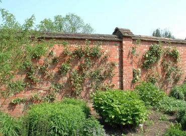 Beton Avlu Duvarı İmalatı Afyonkarahisar