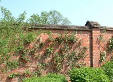 Beton Bahçe Duvarı Yapımı Batman